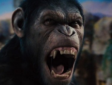 'Dawn of the Planet of the Apes' movie