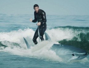 AMP Energy - Shark Surfing