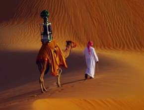 Google Uses Camel To Capture Liwa Desert Street View