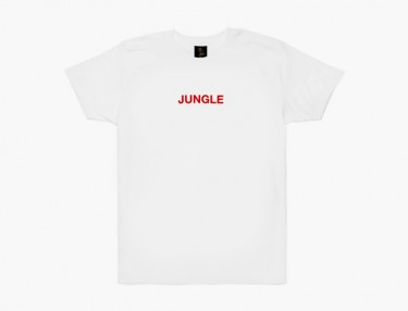 Drake Releases Limited 'Jungle Tour' T-Shirt