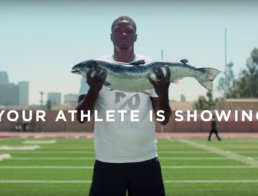 Champs Sports: Your Athlete Is Showing ft. A.J. Green