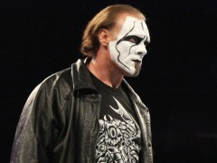 "Wrestling Legend Sting Suffers ""Significant"" Injury"
