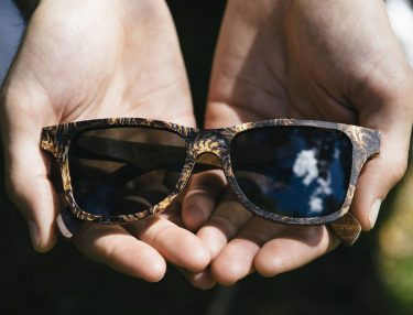 Shwood Eyewear Forest Collection