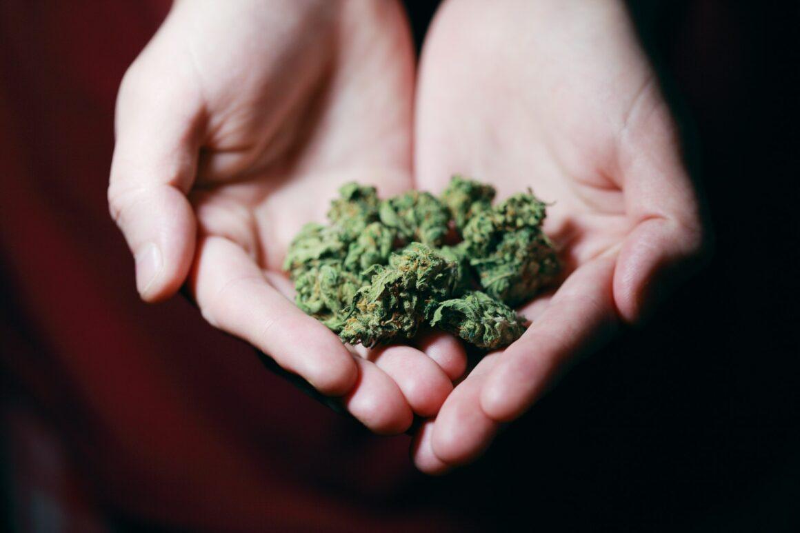 Cannabis - Weed